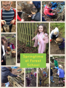 Year 2 spring at Forest School