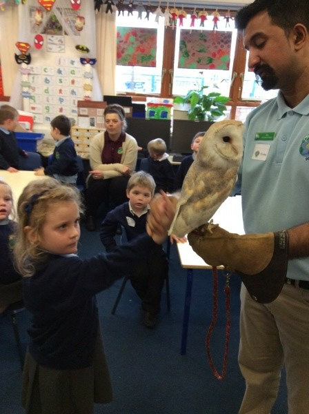 The Animal Man Newdale Primary And Nursery School