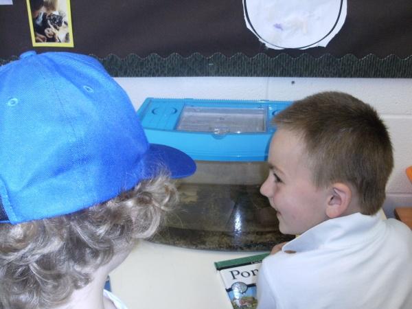 Nursery News Newdale Primary and Nursery School