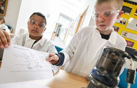 Curriculum at Newdale School, Telford, Shropshire